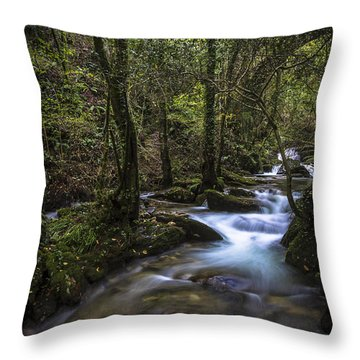 Throw Pillow featuring the photograph Sesin Stream Near Caaveiro by Pablo Avanzini