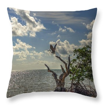 Throw Pillow featuring the photograph Set To Fly Towards The Sun by Julis Simo
