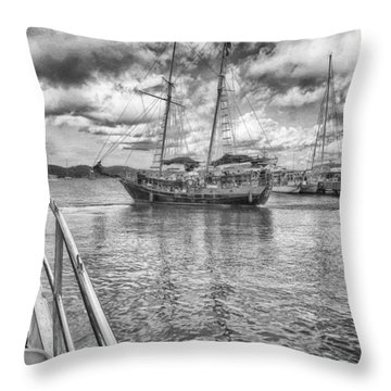 Throw Pillow featuring the photograph Setting Sail by Howard Salmon