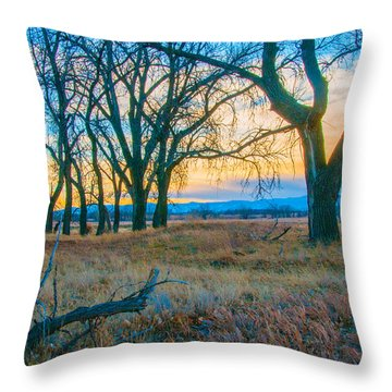 Setting Sun At Rocky Mountain Arsenal_1 Throw Pillow