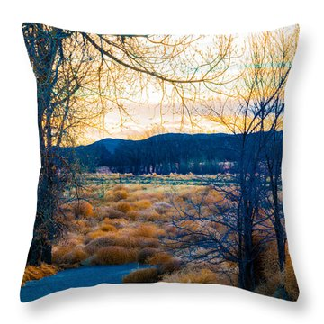 Setting Sun At Rocky Mountain Arsenal_2 Throw Pillow