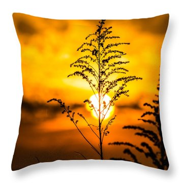 Setting Sun Throw Pillow by Parker Cunningham