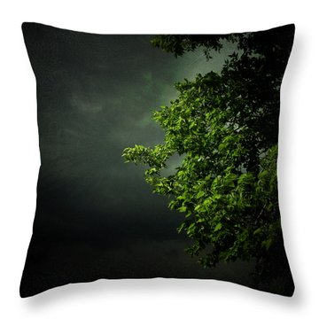 Severe Weather Throw Pillow by Cynthia Lassiter