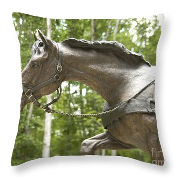 Sgt Reckless Throw Pillow by Carol Lynn Coronios