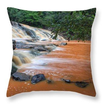 Shacktown Falls Throw Pillow