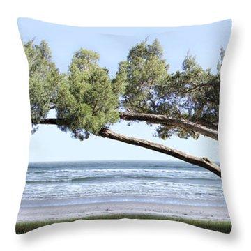 Shade Tree Panoramic Throw Pillow