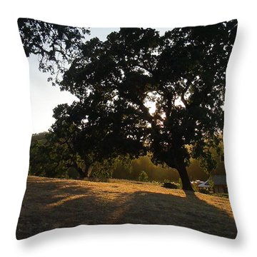 Shade Tree  Throw Pillow