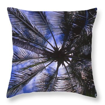 Shade Throw Pillow by William Norton