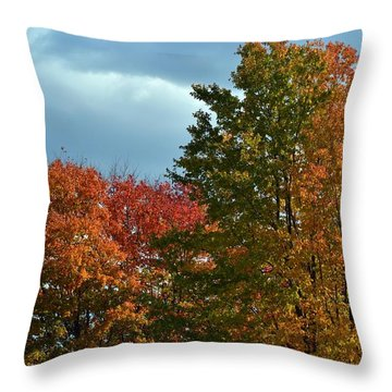 Shaded Throw Pillow by Judy Wolinsky