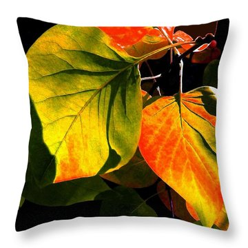 Shades And Shadows Throw Pillow by Will Borden