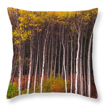 Shades Of Autumn Throw Pillow