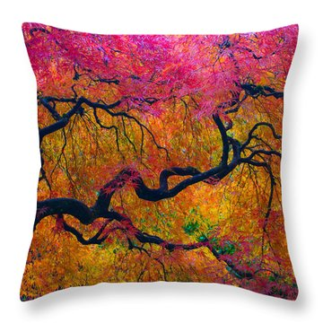 Shades Of Autumn Throw Pillow by Patricia Babbitt
