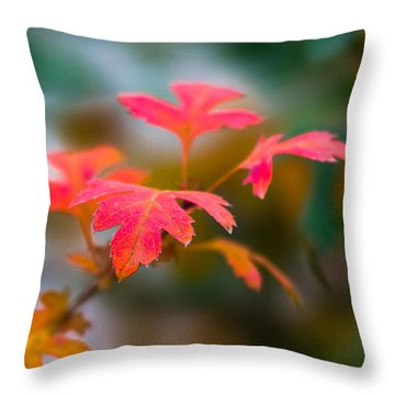 Shades Of Autumn - Red Leaves Throw Pillow by Alexander Senin