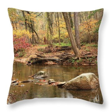 Shades Of Fall In Ridley Park Throw Pillow by Patrice Zinck