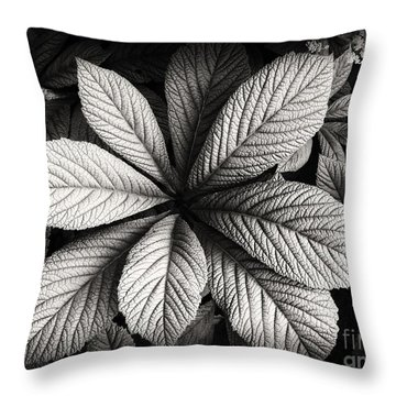 Shades Of Gray Throw Pillow by Nicola Fiscarelli