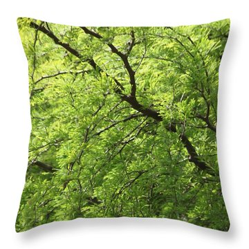 Throw Pillow featuring the photograph Shades Of Green by Amy Gallagher