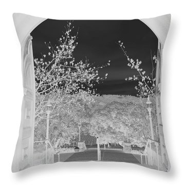 Shades Of Grey Throw Pillow by Carol Lynn Coronios