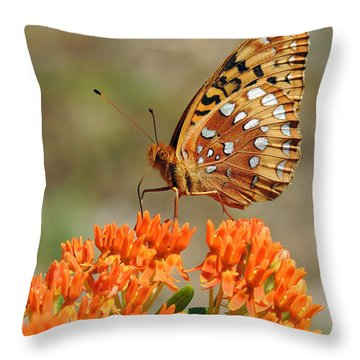 Shades Of Orange Throw Pillow