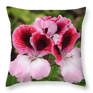Shades Of Pink 2 Throw Pillow by Lew Davis
