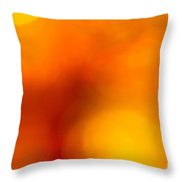 Shades Of Spheres Throw Pillow by Cathy Dee Janes