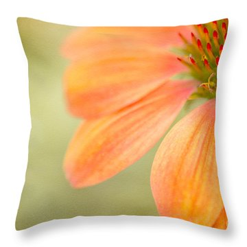 Shades Of Summer Throw Pillow by Beve Brown-Clark Photography