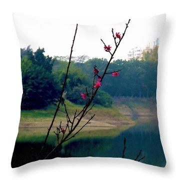 Shadow Mountain Throw Pillow