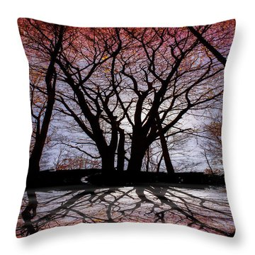 Shadow Secrets Throw Pillow by Bob Orsillo