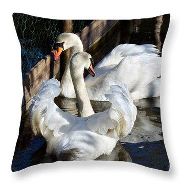 Shadowed Rendezvous Throw Pillow by Susie Peek