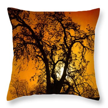 Shadowlands 11 Throw Pillow by Bedros Awak