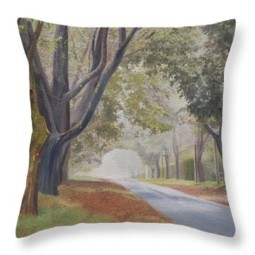 Shadow And Fog Down Beautiful Atlantic Avenue Throw Pillow by Barbara Barber