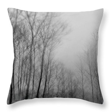 Shadows And Fog Throw Pillow