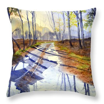 Shadows And Reflections On Skipwith Common Throw Pillow