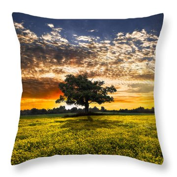 Shadows At Sunset Throw Pillow