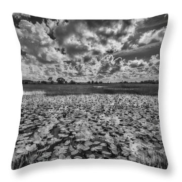 Shadows In The Afternoon Throw Pillow