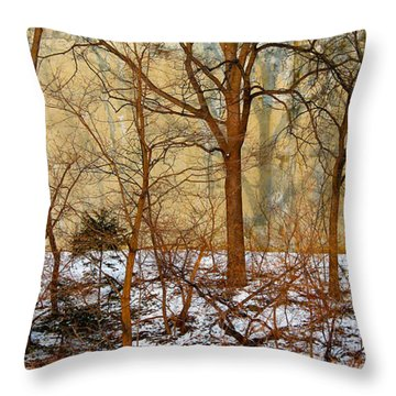 Throw Pillow featuring the photograph Shadows In The Urban Jungle by Nina Silver