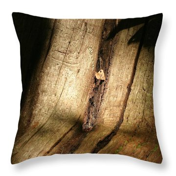 Shadows Throw Pillow by Mark Russell