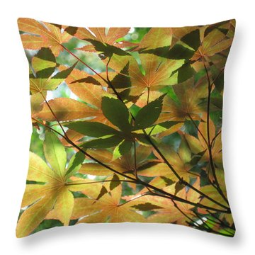 Shadows Of Maple  Throw Pillow