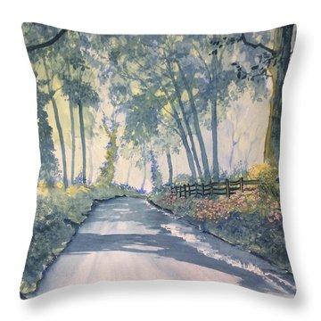 Shadows On The Setterington Road Throw Pillow