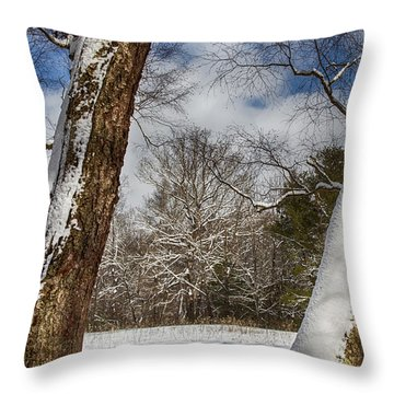Shadows On The Snow Throw Pillow by John Haldane