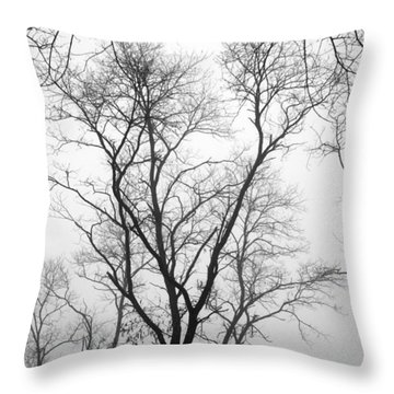 Shadows Through Time Throw Pillow by Brian Wallace