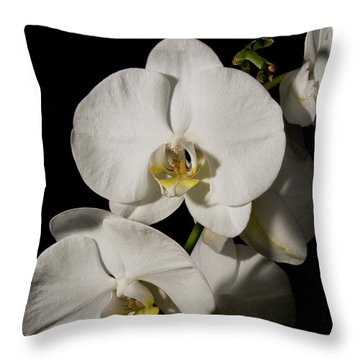 Shadowy Orchids Throw Pillow