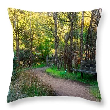Throw Pillow featuring the photograph Shady Dell by Kate Brown