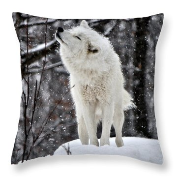 Throw Pillow featuring the photograph Shake It by Heather King