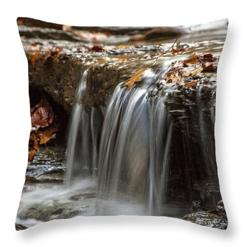 Shale Creek In Autumn Throw Pillow by Darleen Stry