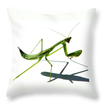 Shall We Dance Throw Pillow