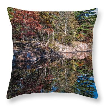 Shambeau Park Fall Reflection Throw Pillow