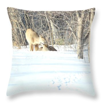 Throw Pillow featuring the photograph Sharing And Caring by Dacia Doroff