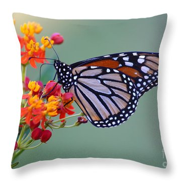Sharing Throw Pillow by Marty Fancy