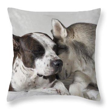 Sharing Secrets  Throw Pillow