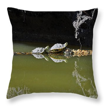 Sharing Sliders Throw Pillow by Al Powell Photography USA